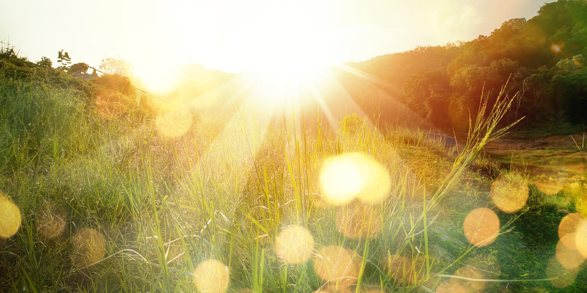 Beautiful sunrise in the mountain